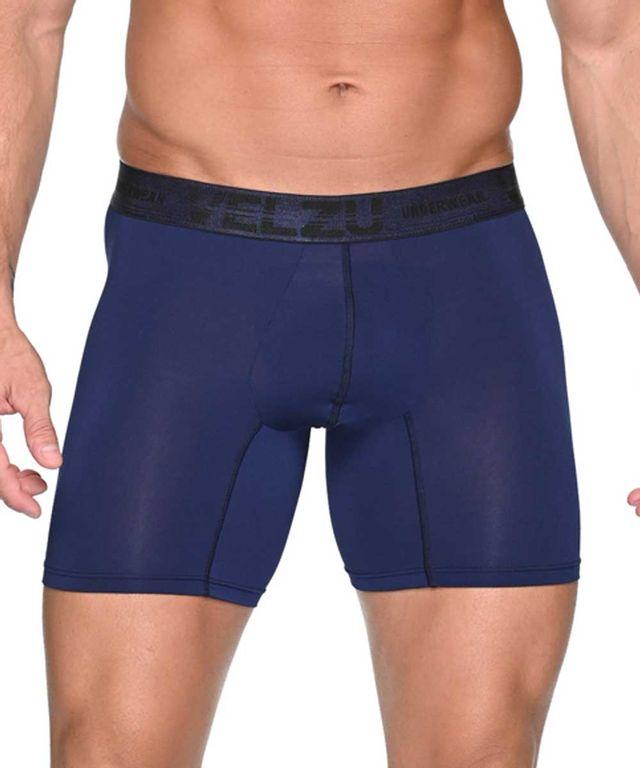 Boxer-Dinant-Azul